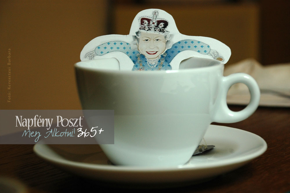 teafilter vicces nyito01